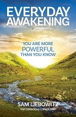 Cover of Everyday Awakening, a book by Sam Liebowitz.